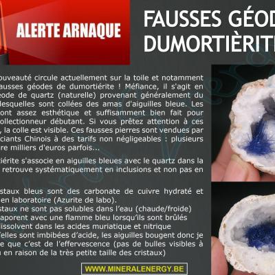 Alerte arnaque (1 Carte)