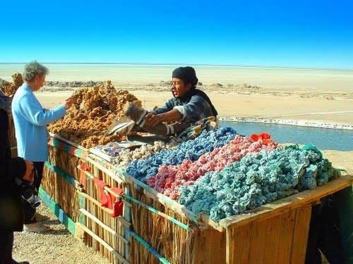 Rose de sables teinté