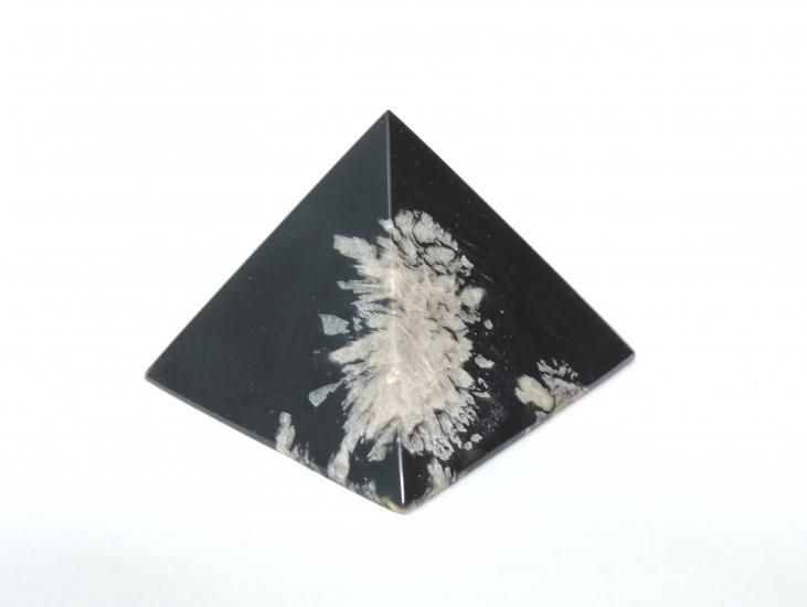 Chrysant obsidiaan 7 cm nieuw