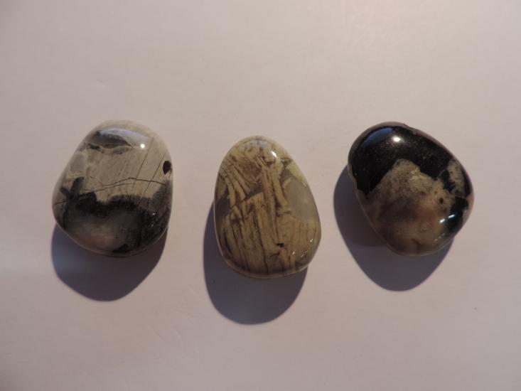 Silverleaf jaspis 1
