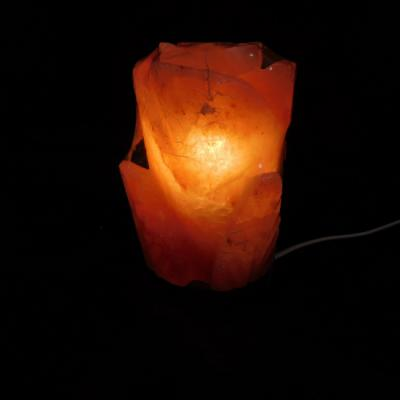 Zoutlamp lotus 2 kg